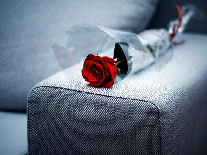 Valentinovo spajanje